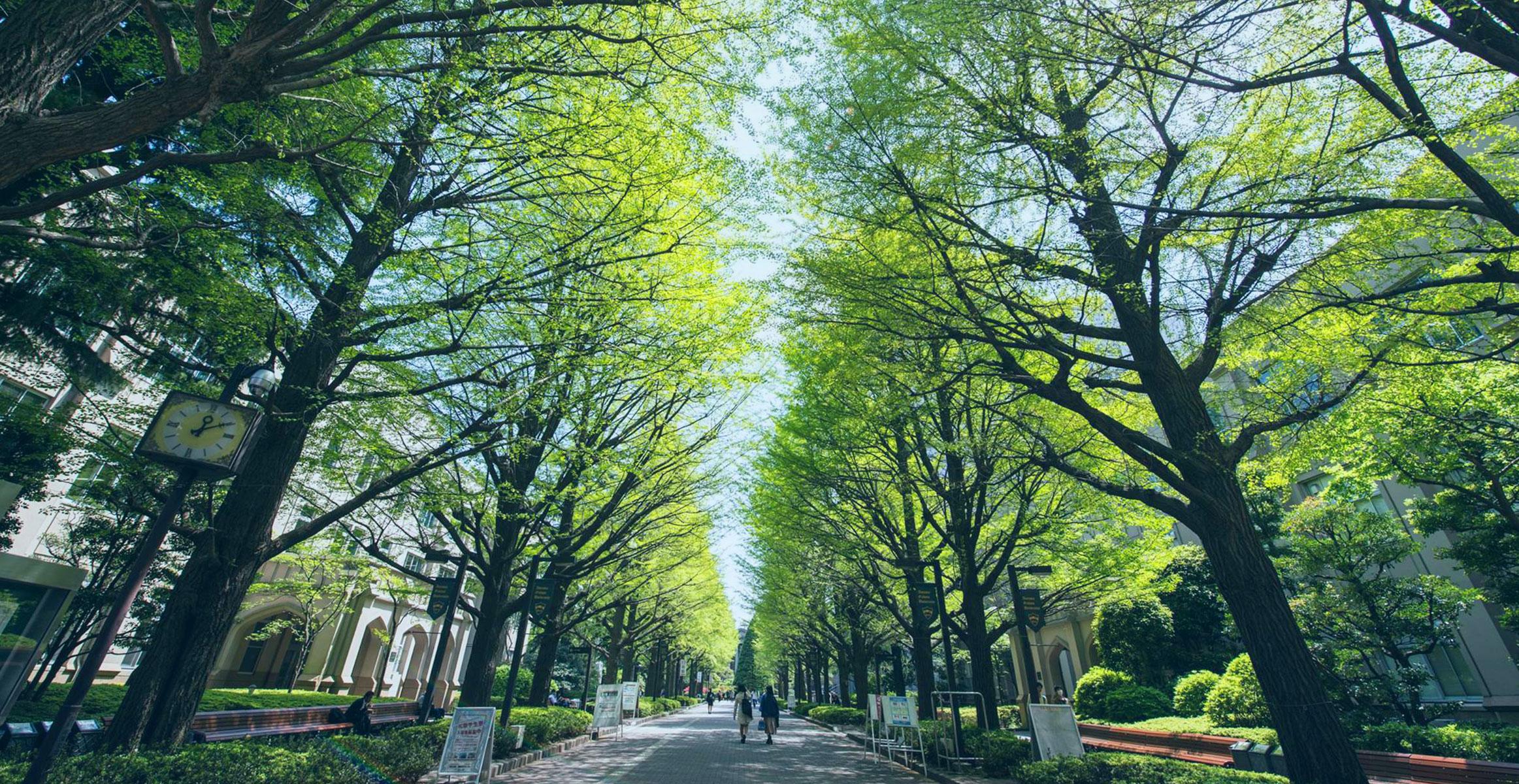 Short Course Program – Aoyama Gakuin University Japan